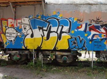 dsc05243